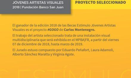 <h6>Fundación Banco San Juan</h6> Ganador de la convocatoria de Becas de Estímulo para artistas Visuales 2018
